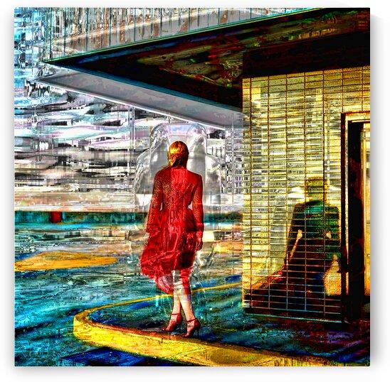 La fille en rouge  by Jean-Francois Dupuis
