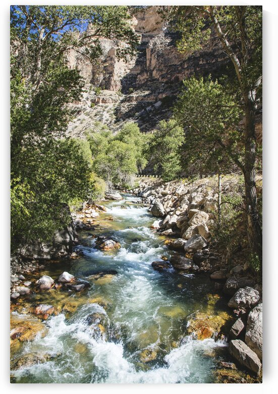 High Country Stream and Cottonwoods in Rugged North Central Wyoming s Rugged Big Horn County. by 7ob
