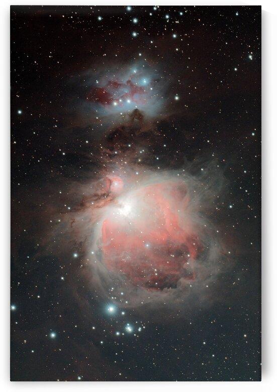 Orion Nebula by Bryan Bourn