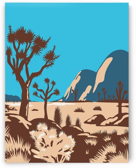 Joshua Tree National Park by Artistic Paradigms