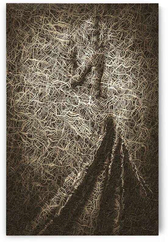 Dancer dream by Jean-Francois Dupuis