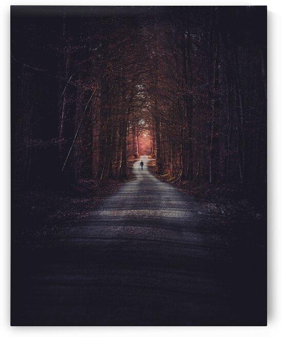 Man walking through the forest of Vaihingen an der Enz  Germany by 7ob