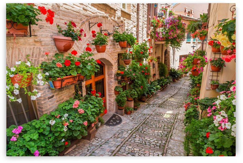 Italy Street Europe Tuscany Old Italian House Building Flowers  Town Flower Porch Travel Ancient Exterior Door City Village by 7ob