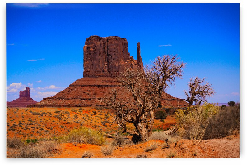 Monument Valley by Giulio Bardelli