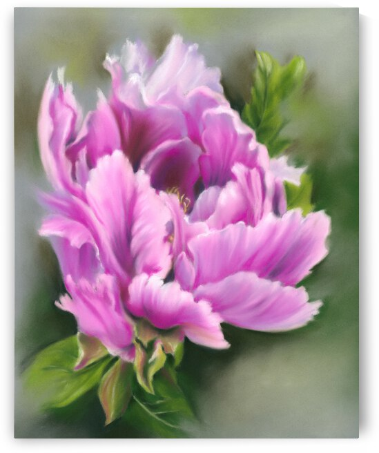 Pretty Pink Peony Flower by MM Anderson
