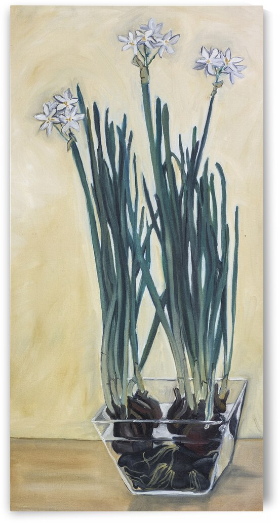 Paperwhites by Cathy Colson