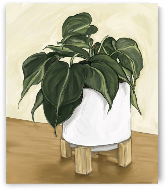 Pothos by Cathy Colson