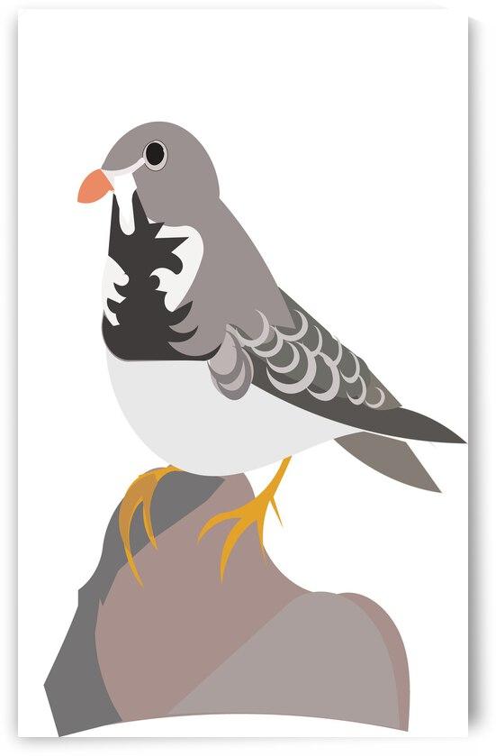 Birdsea by Sarah Butcher