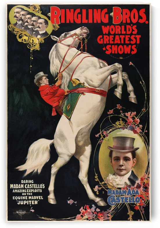 Madam Ada Castello and Jupiter, poster for Ringling Brothers, 1899 by VINTAGE POSTER