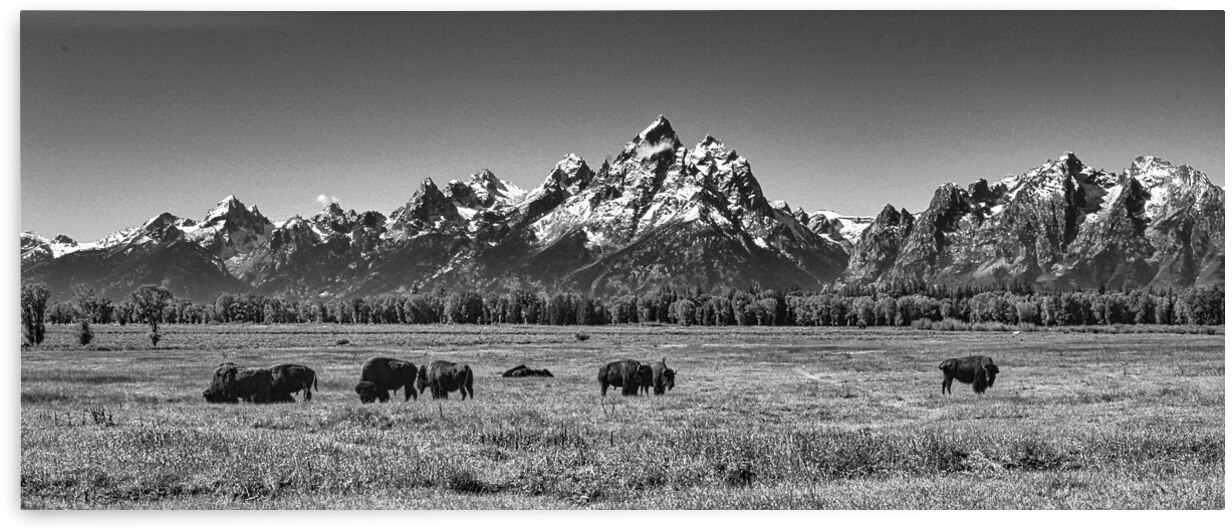 GrandTetons by Adventure Photography