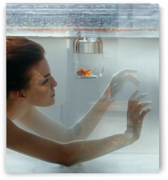 Goldfish-2 by Olena Domanytska