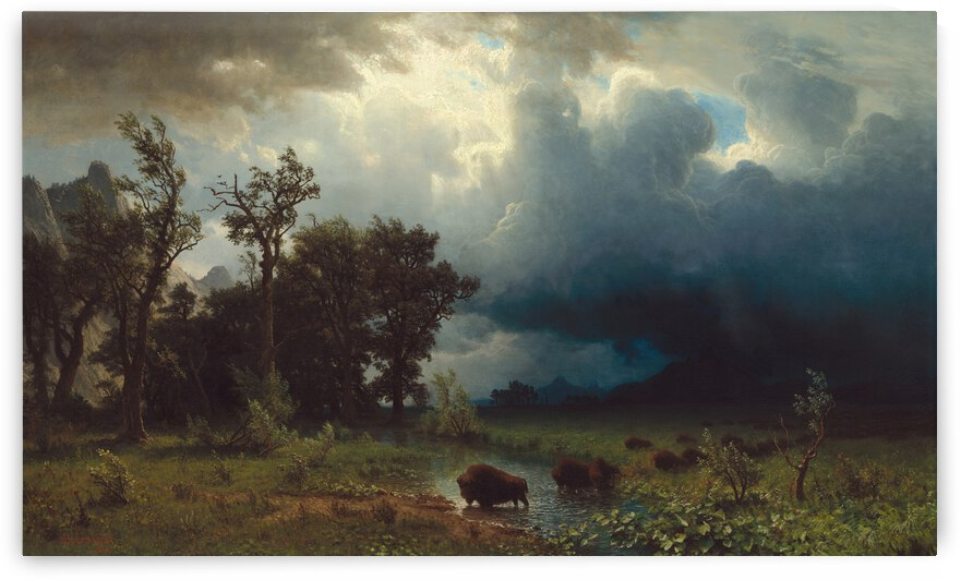 Buffalo Trail The Impending Storm by One Simple Gallery