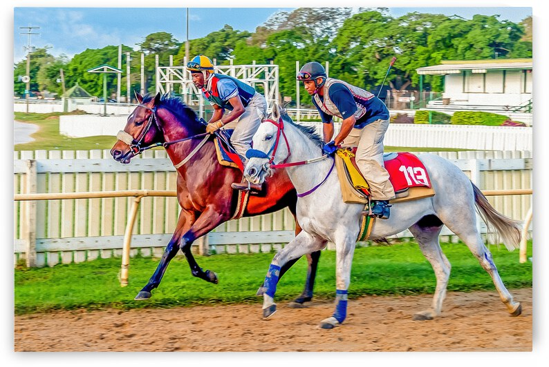 Racehorse08 by Eric Franks Photography