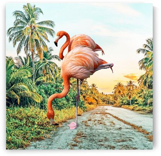 Flamingo Vacay by 83 Oranges