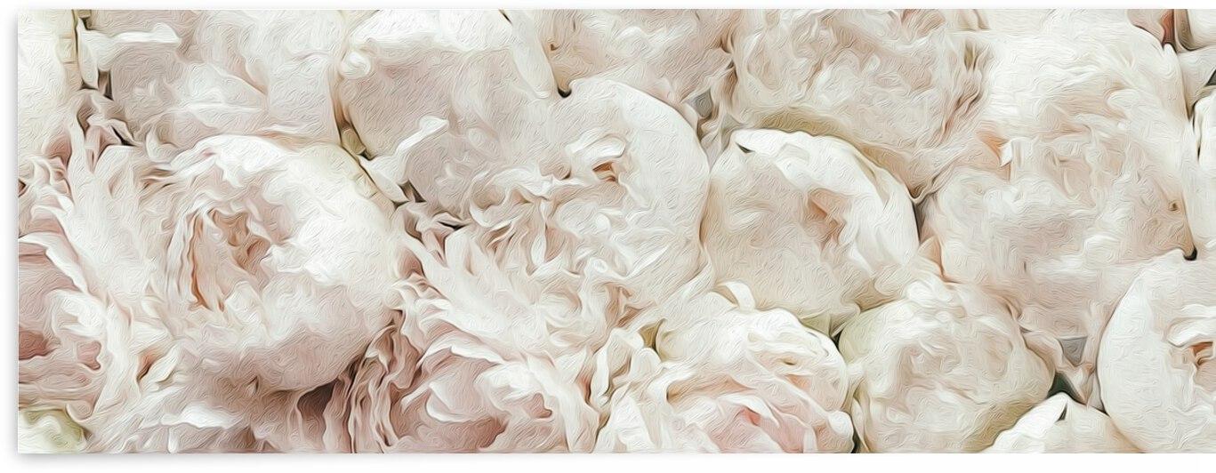 White terry peonies.  by Ievgeniia Bidiuk