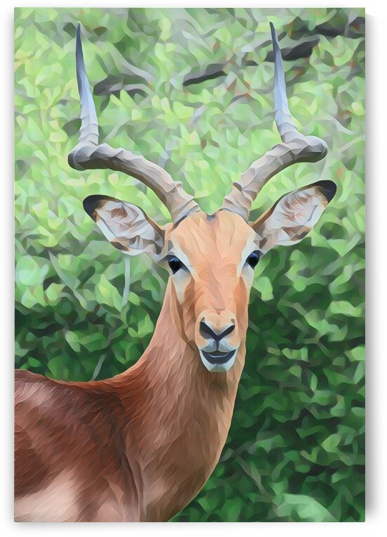 Beautiful Antelope Painting by Lovely Singam