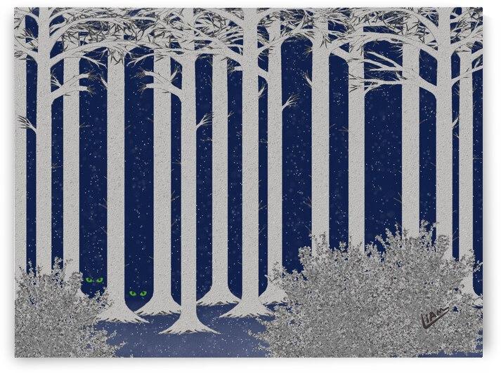 Winter Wood by Liam David
