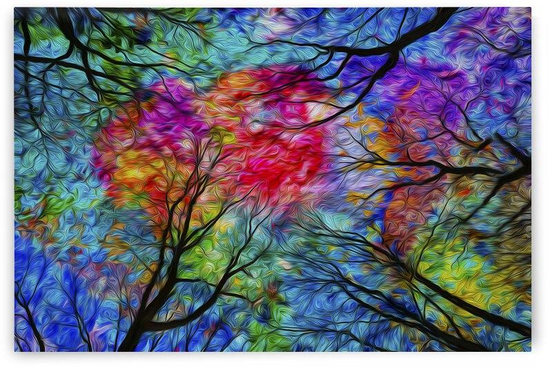 Multicolore by Christian Bibeau
