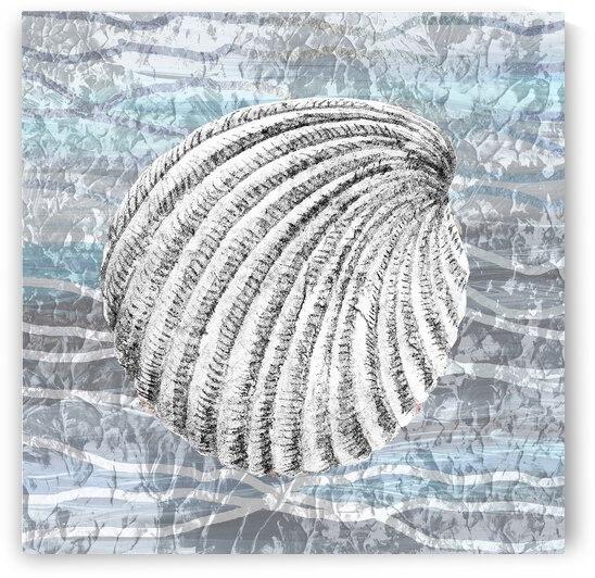 Silver Gray Seashell On Ocean Shore Waves And Rocks II by Irina Sztukowski