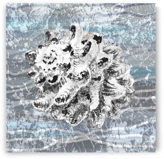 Silver Gray Seashell On Ocean Shore Waves And Rocks VI by Irina Sztukowski