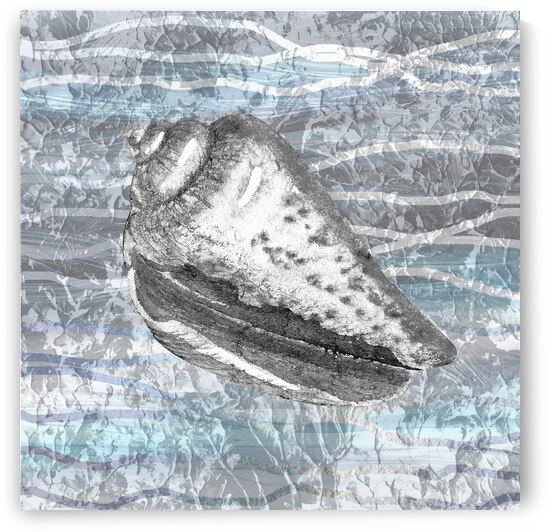 Silver Gray Seashell On Ocean Shore Waves And Rocks VIII by Irina Sztukowski