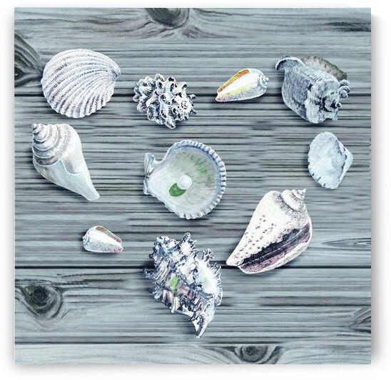 Silver Gray Seashells Heart On Ocean Shore Wooden Deck Beach House Art  by Irina Sztukowski