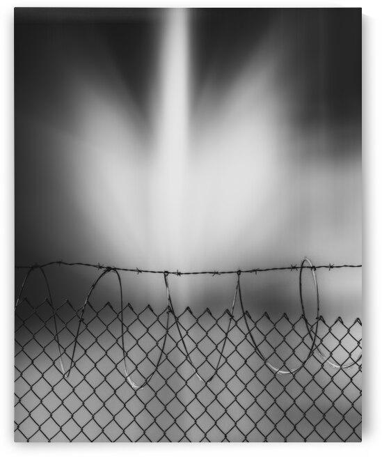 Defense by Bob Orsillo