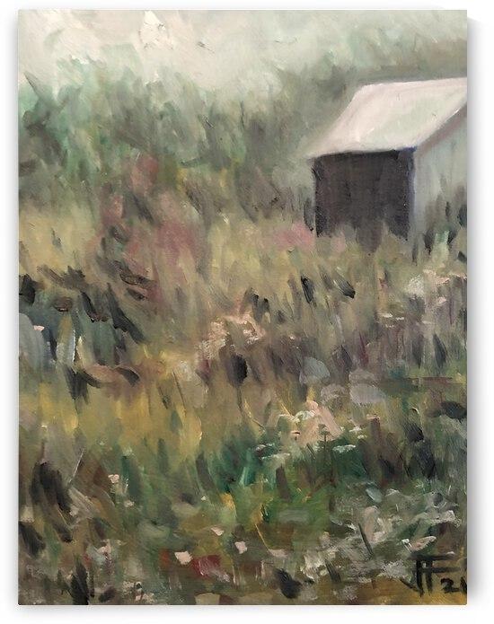 Field and Barn  by J HARRIS