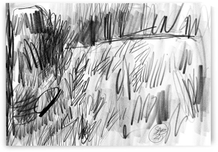 Lawn sketch by Sarah Butcher