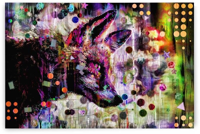 Foxy Boy by Jean-Francois Dupuis