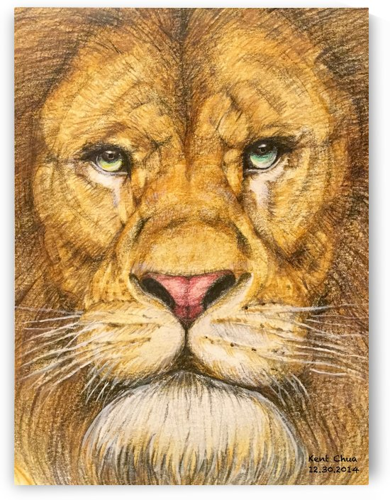 The Regal Lion by Kent Chua
