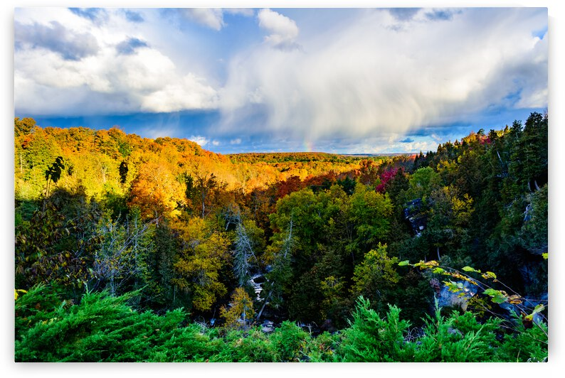 Inglis Falls - The View Out by Monica Roberts Photography