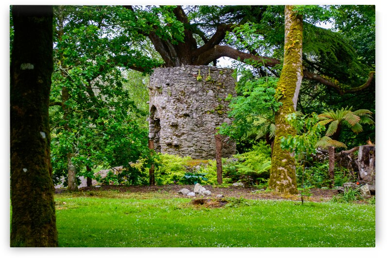 Blarney Gardens by Monica Roberts Photography