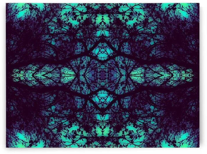 portal 28A6D466 by Jesse Schilling