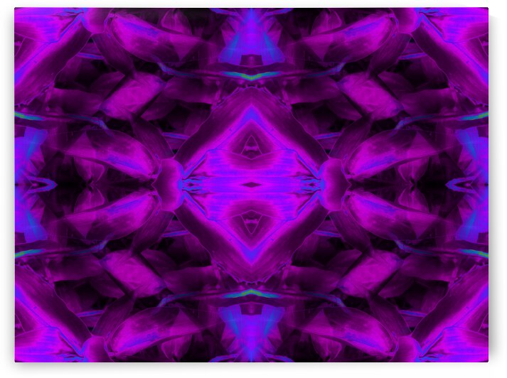 portal 8573E471 by Jesse Schilling