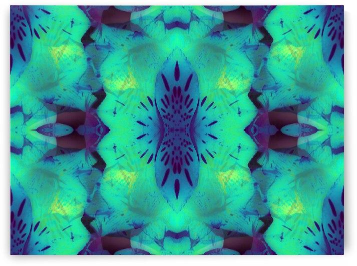 portal 0D2813D6 by Jesse Schilling