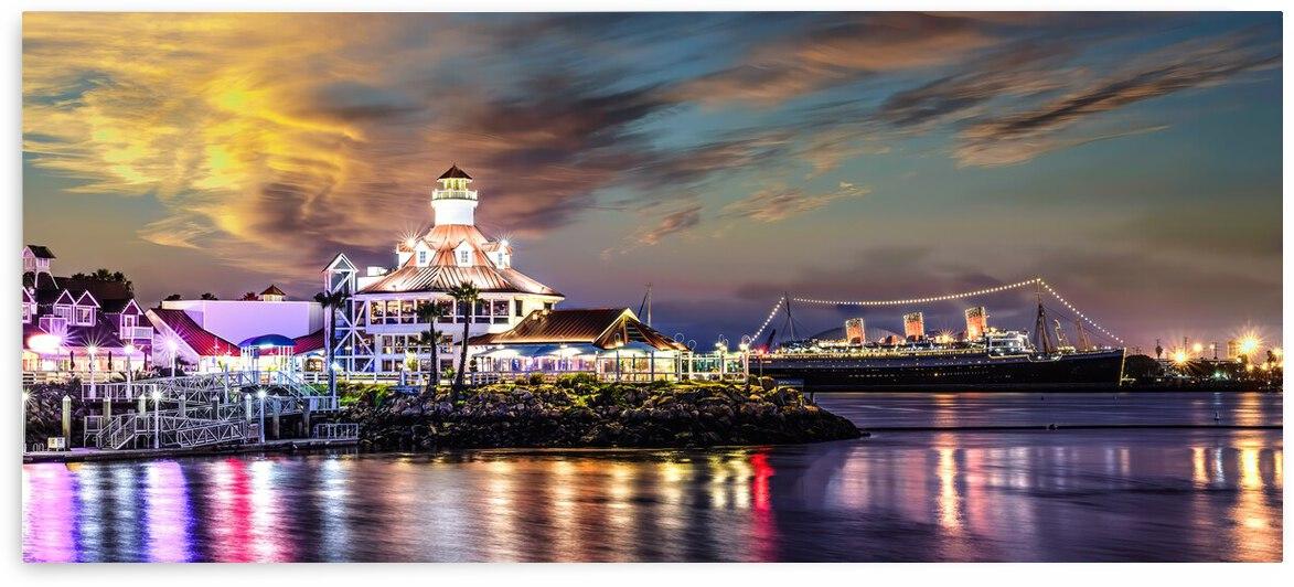 Long Beach California Bay by Larry Gibson