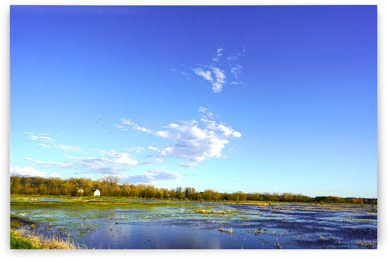 Spring in the Estuary by 1North