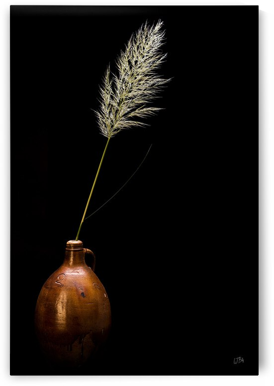 Still life with pottery and plume by BILAS