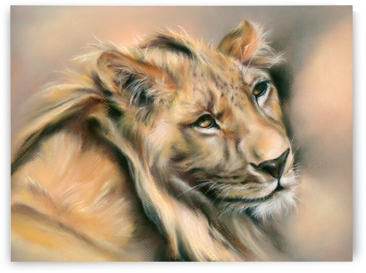 Regal Male Lion at Rest by MM Anderson