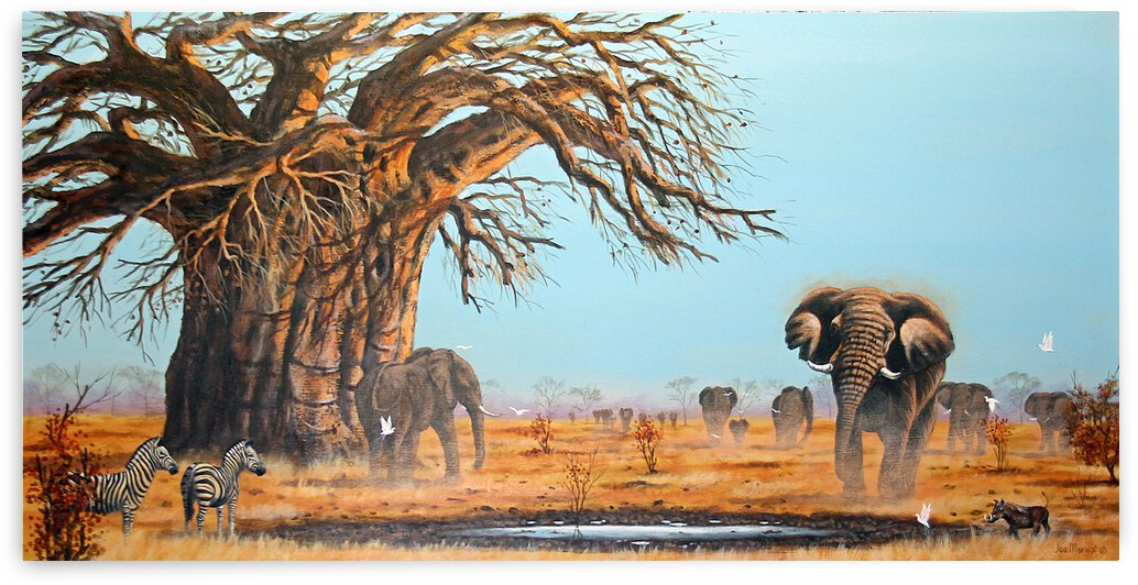 Africa Extraordinaire by Joe Marais