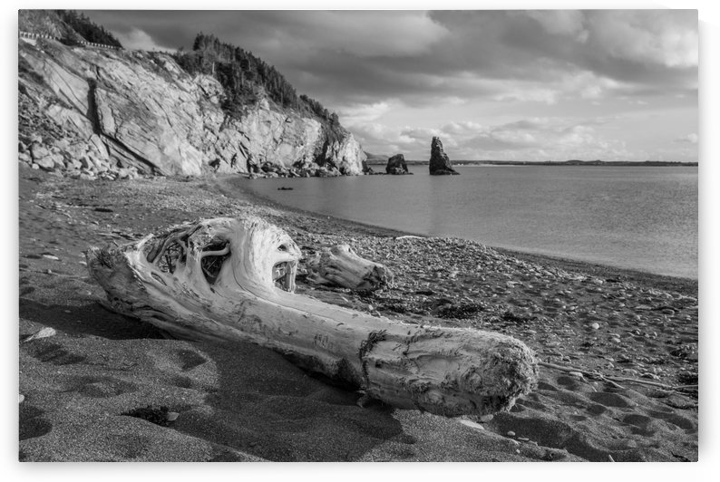 La Presqu'ile in black and white by Michel Soucy