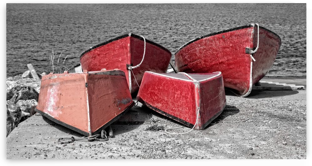 Red Dorries by Michel Soucy