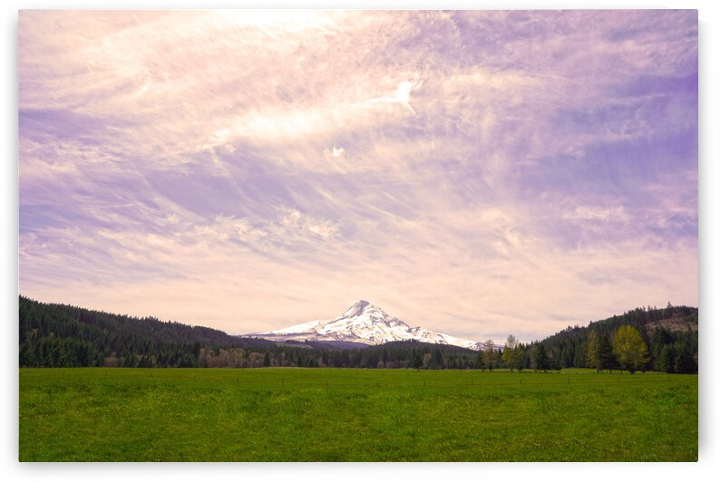 Mount Hood Bathed in Golden Rays at Sunset by 1North