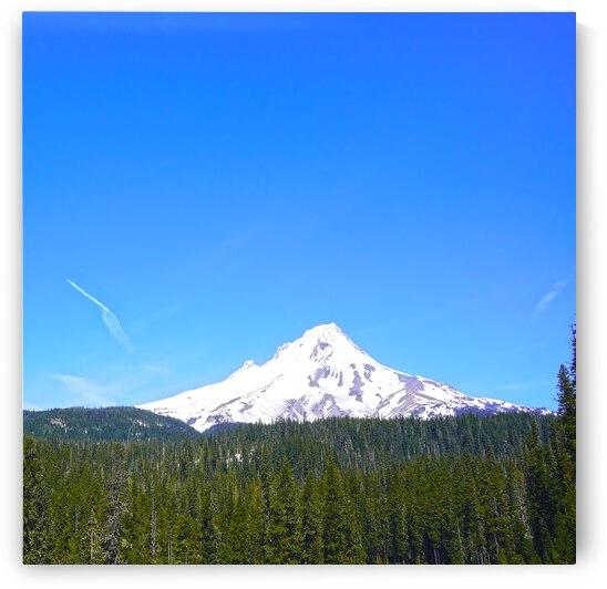 Mount Hood in Spring by 360 Studios