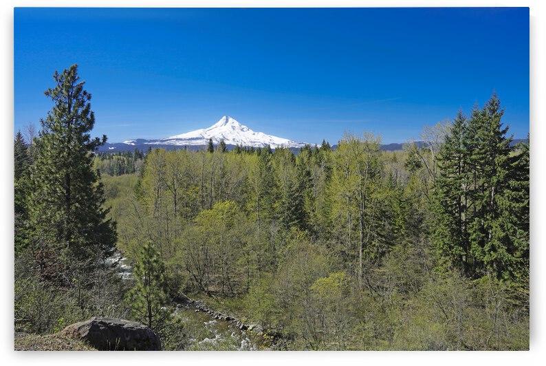 Mount Hood   Oregon by 360 Studios