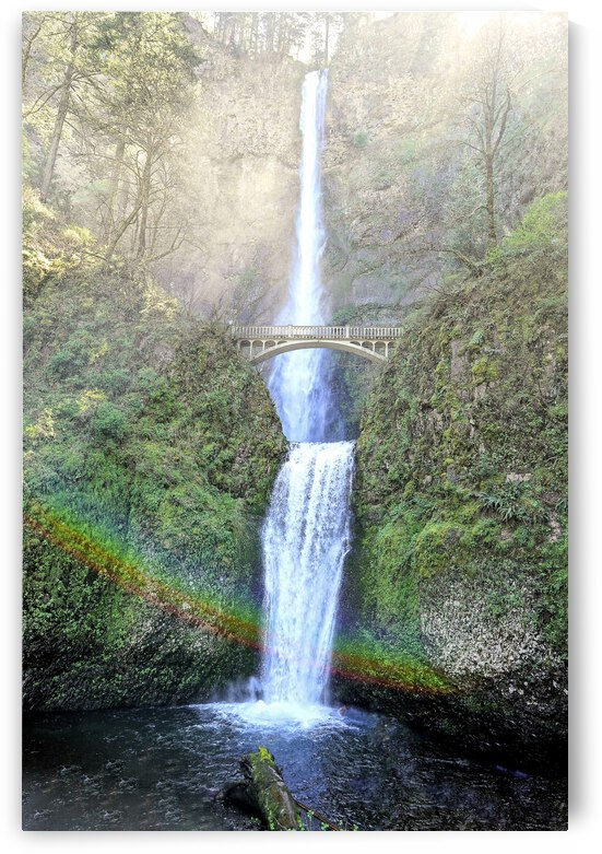 Multnomah Falls Bathed in Sunlight Mist and Rainbows by 24