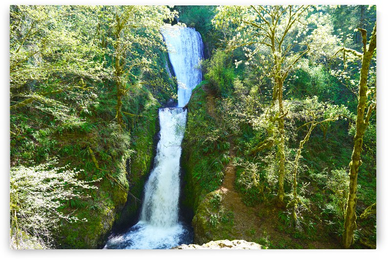 Bridal Veil Falls  - The Gorge Oregon by 24