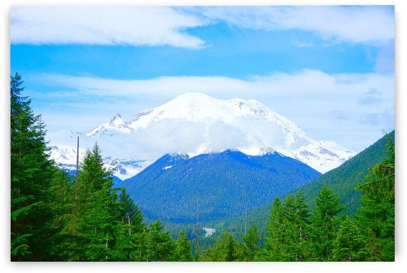 Mount Rainier - Pacific Northwest Washington by 24