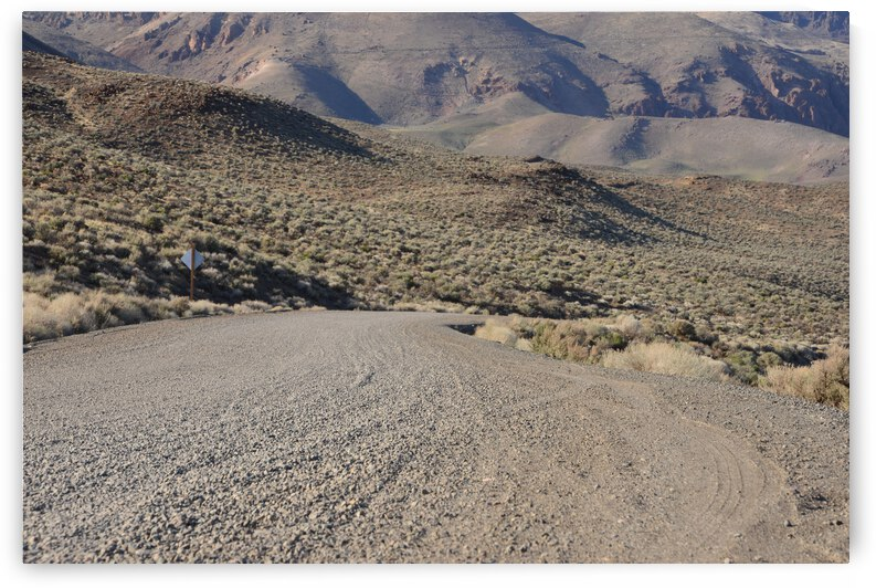 Looking Down The Rugged Gravel Road by PieLar Inspirations